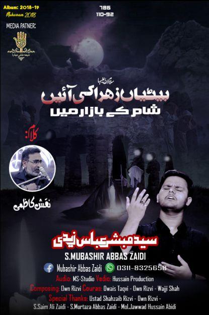 Mubashir Abbas Zaidi