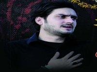 S M Zeeshan Haider